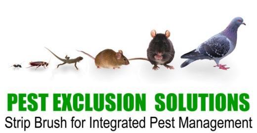 Integrated Pest Management Sealeze A Jason Company